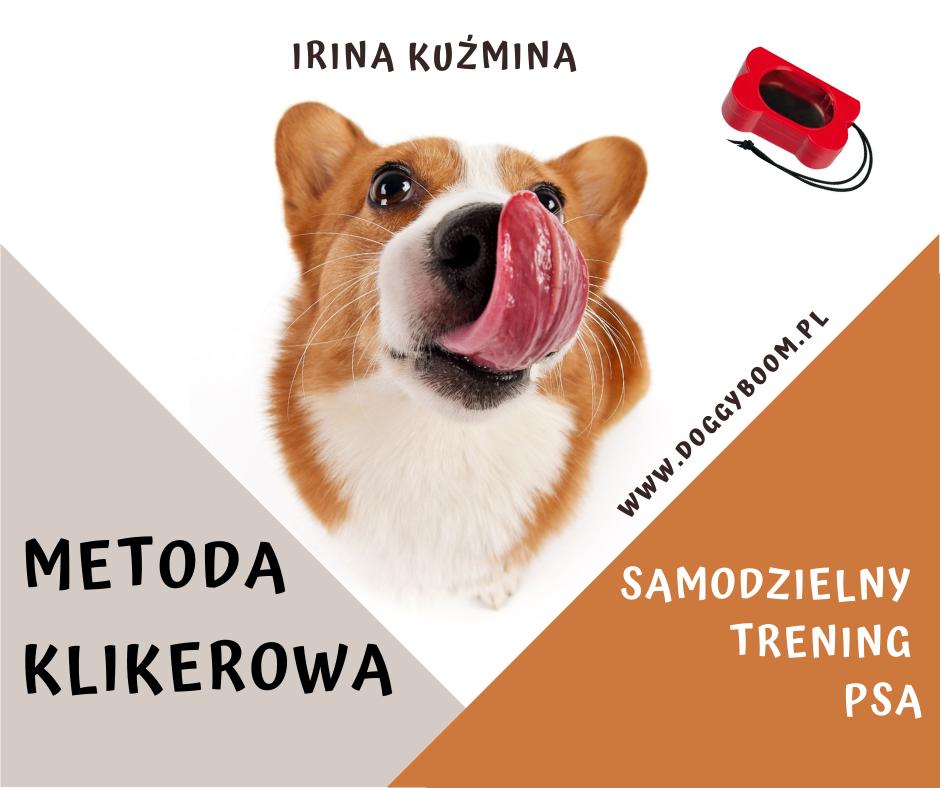 Metoda klikerowa Samodzielny trening psa