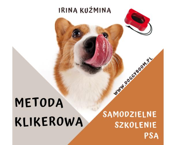 Metoda klikerowa Samodzielne szkolenie psa